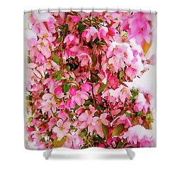 Late Snow Early Flowers Shower Curtain