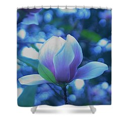Late Summer Bloom Shower Curtain by John Glass