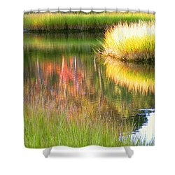 Late Summer Marsh Calm Shower Curtain