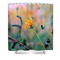 Late Summer Rain From The Forest Floor Shower Curtain by Bob Orsillo