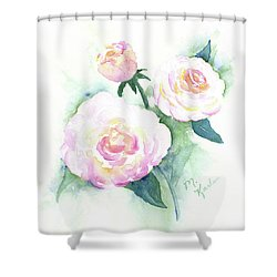 Late Summer Roses Shower Curtain