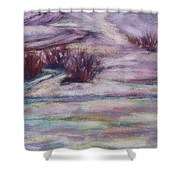 Late Winter Light Shower Curtain