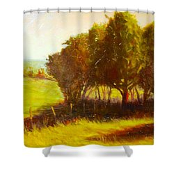 Later Summer Shade Shower Curtain