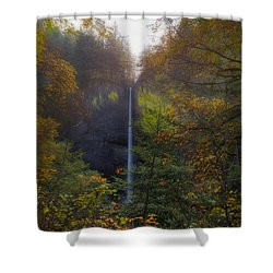 Latourell Falls In Autumn Shower Curtain by David Gn