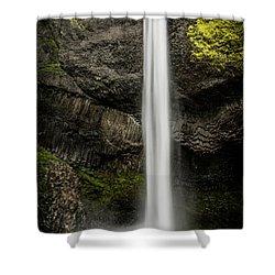 Latourell Falls Shower Curtain by Joe Hudspeth