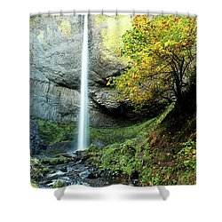Latourell Falls Shower Curtain