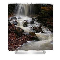 Latrobe Pa Shower Curtain by Denise Moore