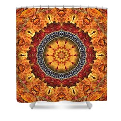 Laughing Monkeys Playing Dominoes Shower Curtain