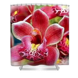 Laughing Orchids Shower Curtain