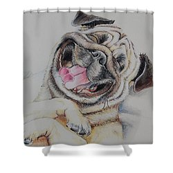 Laughing Pug Shower Curtain