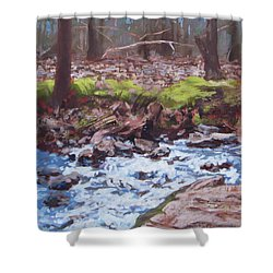 Laughing Stream In Winter Shower Curtain by Carol Strickland