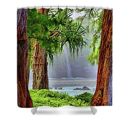 Shower Curtain featuring the photograph Laupahoehoe Hawaii by DJ Florek