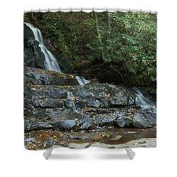 Laurel Falls 2 Shower Curtain by Michael Peychich