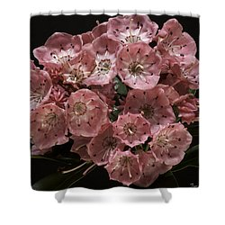 Laurel Shower Curtain