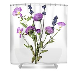 Lavender And Blue Shower Curtain