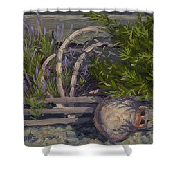 Lavender And Lobster Shower Curtain