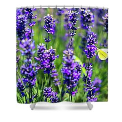 Shower Curtain featuring the photograph Lavender And The Heart by Ryan Manuel