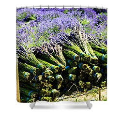 Lavender Bounty Shower Curtain