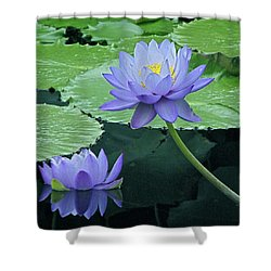 Shower Curtain featuring the photograph Lavender Enchantment by Byron Varvarigos