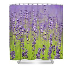 Shower Curtain featuring the photograph Lavender Fantasy by Jani Freimann