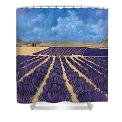 Shower Curtain featuring the painting Lavender Field by Anastasiya Malakhova