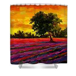 Lavender Fire Shower Curtain