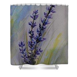 Lavender Shower Curtain by Gretchen Bjornson