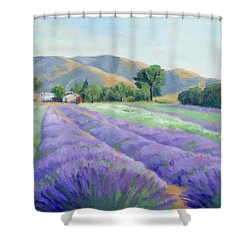 Lavender Lines Shower Curtain by Sandy Fisher