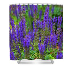 Shower Curtain featuring the digital art Lavender Patch by Chris Flees