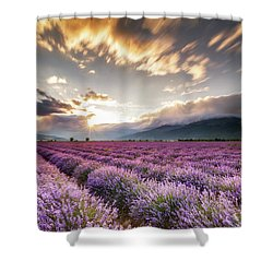Lavender Sun Shower Curtain by Evgeni Dinev