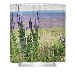 Lavender Verbena And Hills Shower Curtain