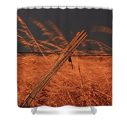 Lay Me Down In Golden Pastures Shower Curtain