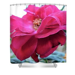Shower Curtain featuring the photograph Layers And Layers by Beto Machado