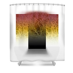 Layers Of Entanglement 5 Shower Curtain