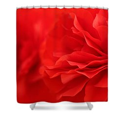 Layers Promises Shower Curtain