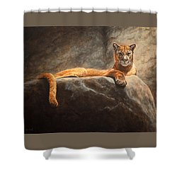 Laying Cougar Shower Curtain