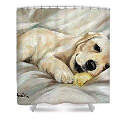 Lazy Bones Shower Curtain by Mary Sparrow