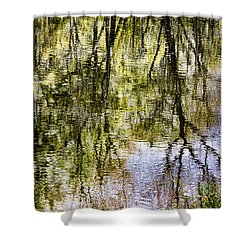 Shower Curtain featuring the photograph Lazy Day by John Hansen