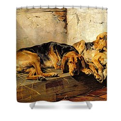 Lazy Moments Shower Curtain by John Sargent Noble