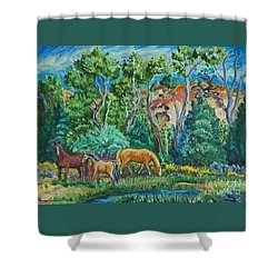Lazy Wyoming Afternoon Shower Curtain by Dawn Senior-Trask