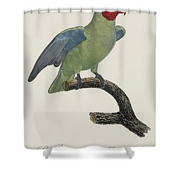 Le Perroquet Geoffroy Male / Red Cheeked Parrot - Restored 19th C. By Barraband Shower Curtain by Jose Elias - Sofia Pereira