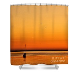 Shower Curtain featuring the photograph Le Voyage 02 by Aimelle