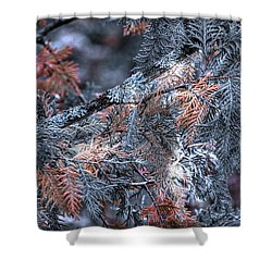 Ceader Shower Curtain