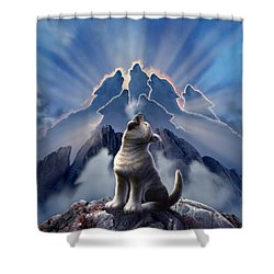 Leader Of The Pack Shower Curtain by Jerry LoFaro