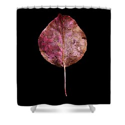 Leaf 20 Shower Curtain