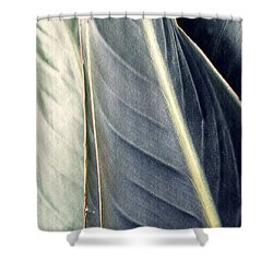 Leaf Abstract 14 Shower Curtain by Sarah Loft