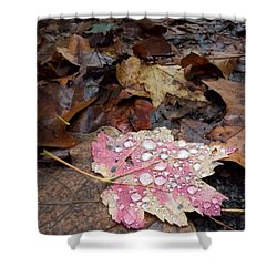 Shower Curtain featuring the photograph Leaf Bling by Kendall McKernon