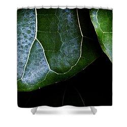 Leaf Shower Curtain