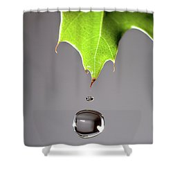 Leaf Drip Shower Curtain