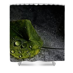 Leaf Droplets Shower Curtain